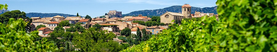 Village vignoble provence